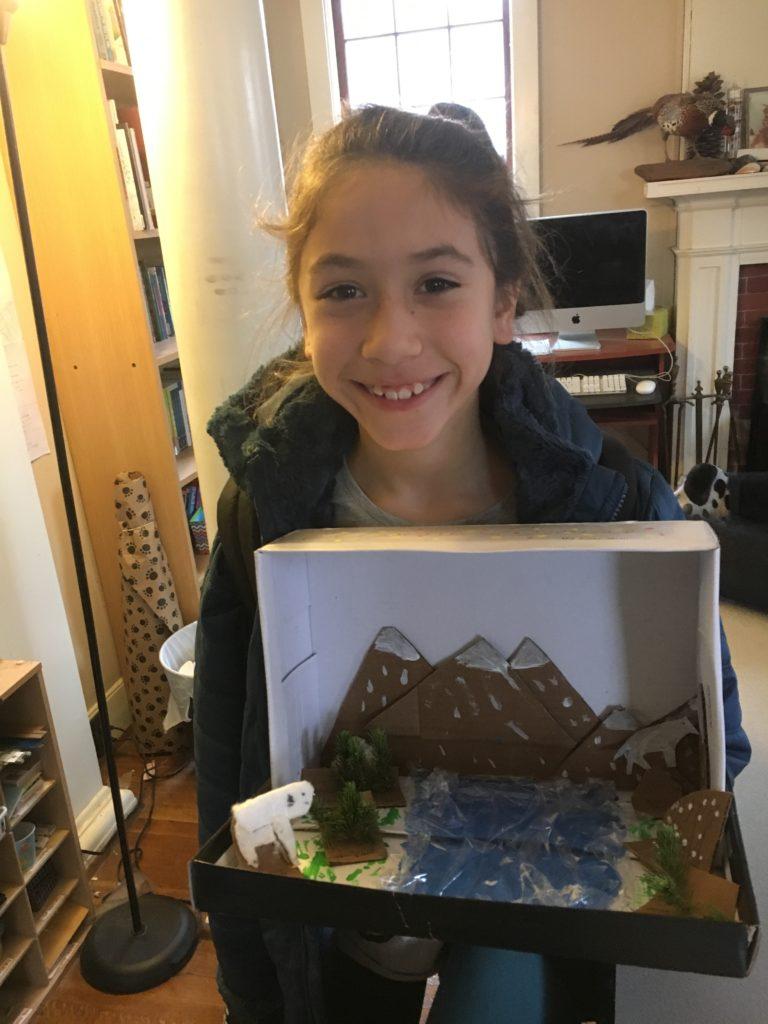 Alpine biome diorama